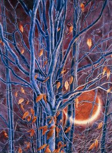 Earthshine and Stunted Beech, by Michael McFarland