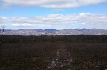 The view from the heath barrens at Eals Preserve