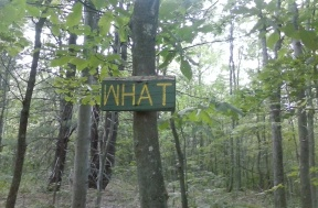What Trail is This?