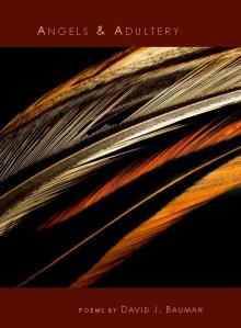 David J. Bauman, Angels & Adultery Cover