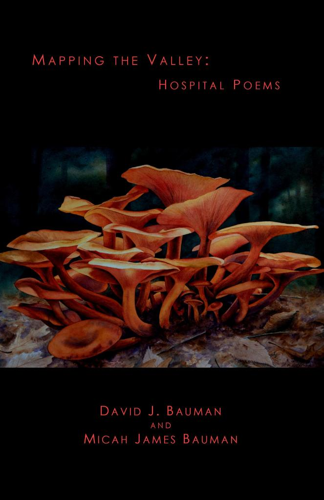 Book cover for Mapping the Valley, by David J. Bauman and Micah James Bauman, cover art by Michael B. McFarland, painting of orange, Jack o'lantern mushrooms on forest floor